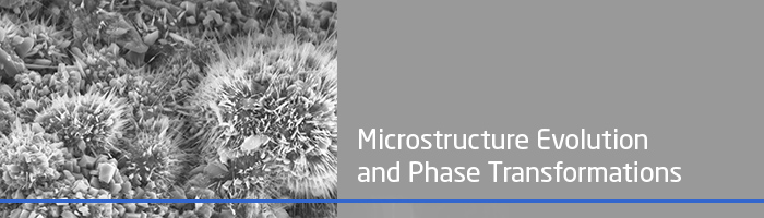 Microstructure Evolution and Phase Transformations